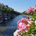 Slika Rijeke Amstel s cvijećem